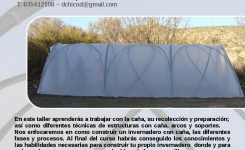 Natural building course at Cultura de la Tierra – Polytunnel
