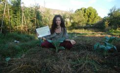 First steps to achieve food sovereignty – Kokopelli