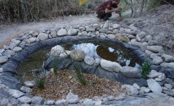A new pond for our wastewater system!