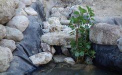 ¡Construimos un estanque para nuestro sistema de aguas residuales!