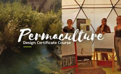 29.09 – 13.10.2019 Permaculture Design Course