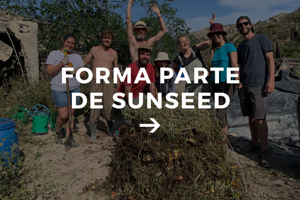 forma parte de Sunseed