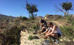 Practical course in Ecosystem Restoration
